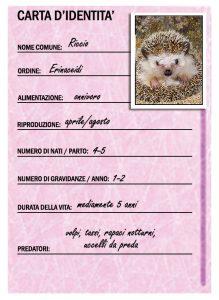 carta-didentita-riccio