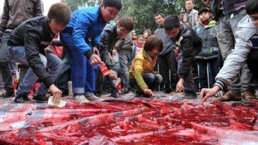 vietnamese-pig-chopping-ritual-014