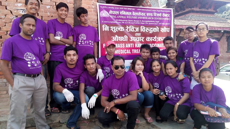 OIPA NEPAL – FIGHTING TO END RITUAL SACRIFICES AND RESCUE STRAY ANIMALS!