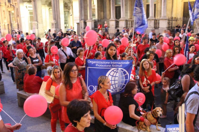 OIPA ITALY: MARCH AGAINST YULIN IN MILAN