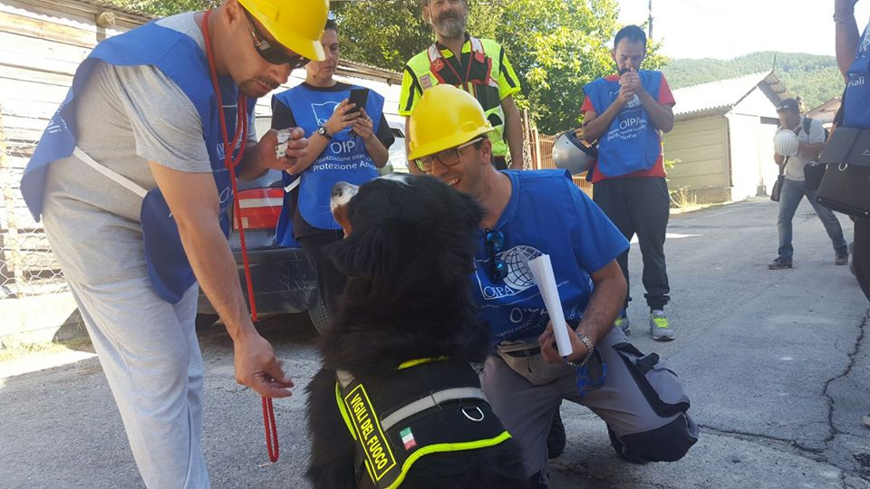 31st August – OIPA VOLUNTEERS SUPPORT THE RESCUING OPERATIONS AFTER THE EARTHQUAKE –COMMITMENT, DEDICATION AND SOLIDARITY