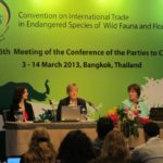 THE CITES (COP17) CONFERENCE WILL BE RUNNING FROM SEPTEMBER 24TH TO OCTOBER 5TH