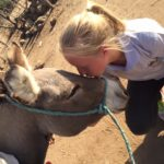 OIPA TANZANIA – COMMUNITY PROJECTS AND DONKEYS' WELFARE EDUCATION