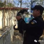 OIPA CHINA – SHELTERS FOR STRAY DOGS IN SCHOOLS, A WHOLE NEW WAY TO CARE FOR ANIMALS