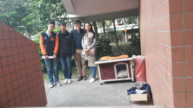 THE STRAY CAT FOUND HOME IN THE SCHOOL, CHINA