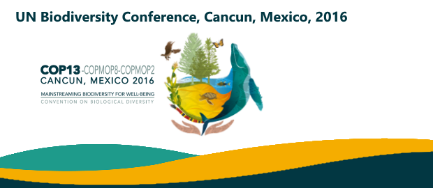 EXPERTS HOLD FORUM ON BUSINESS AND BIODIVERSITY IN COP13 IN CANCUN