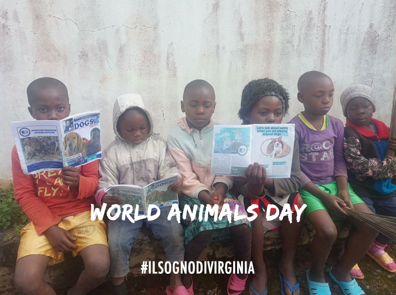 OIPA Cameroon creates the first primary school animal welfare club in the Western Region of Cameroon on World Animal Day
