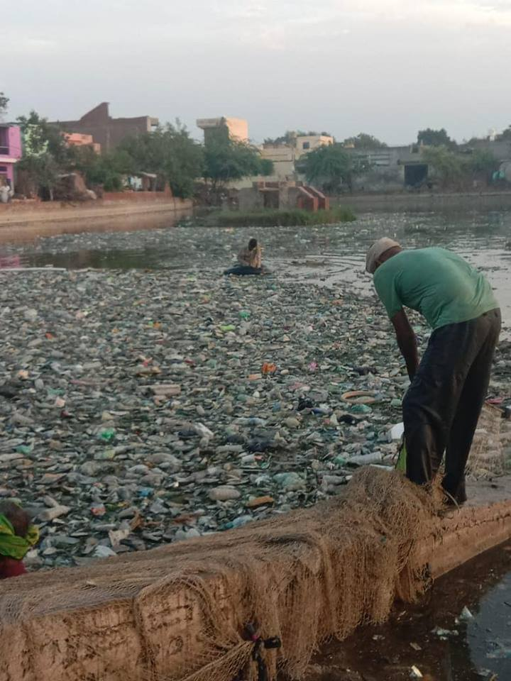 OIPA INDIA ASKS FOR IMMEDIATE ACTION TO STOP WATER POLLUTION LEVELS FROM RISING IN THE STATE OF HARYANA
