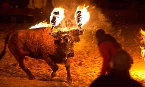 toro-de-fuego-3