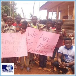 ENVIRONMENTAL PROTECTION AND ANIMAL WELFARE EDUCATION OUTREACH IN 14 PRIMARY SCHOOLS IN THE WEST REGION, CAMEROON