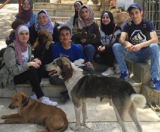 palestine-dogs2