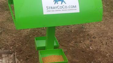 straycoco3