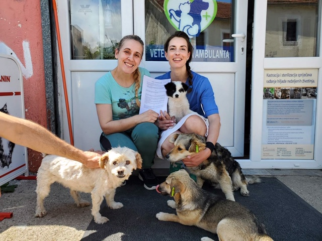 NEW PROGRAMME FOR THE SAFEGUARD AND PROTECTION OF STRAY DOGS IN NIKSIC, MONTENEGRO
