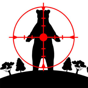 """BEAR SENTENCED TO DEATH: OIPA ITALY AGAINST THE LOCAL GOVERNMENT OF TRENTO FOR INDISCRIMINATELY CULLING BEARS WITHOUT A """"TRIAL"""""""