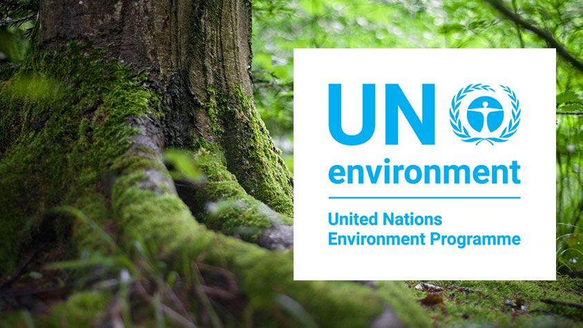 PLANETARY CHALLENGES AND ENVIRONMENTAL SUSTAINABILITY: VIRTUAL DISCUSSION ABOUT UNEP MEDIUM-TERM STRATEGY 2022 – 2025