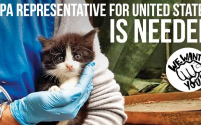 INTERNATIONAL REPRESENTATIVE FOR UNITED STATES WANTED. BE THE VOICE OF THE VOICELESS!