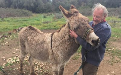 A MAN IN DIFFICULTY AND HIS INSEPARABLE COMPANION ANIMALS, OIPA CORSICA VOLUNTEERS LEND A HELPING HAND