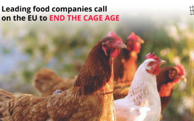 LEADING FOOD COMPANIES CALL ON THE EU TO END THE CAGE AGE