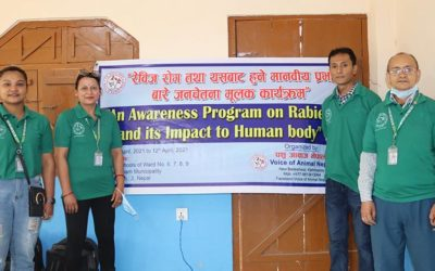 VOICE OF ANIMAL NEPAL PROMOTES ANIMAL AWARENESS IN SCHOOLS AND SCHEDULES THE NEXT SPAY/NEUTER PROGRAMME FOR STRAY DOGS. SUPPORT THEIR ABC PROGRAMME