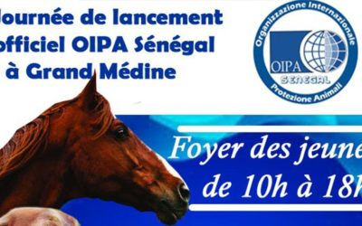 ABANDONED, STRAY AND ENDANGERED ANIMALS CAN NOW FIND PROTECTION THANKS TO THE NEW OIPA DELEGATION IN SENEGAL