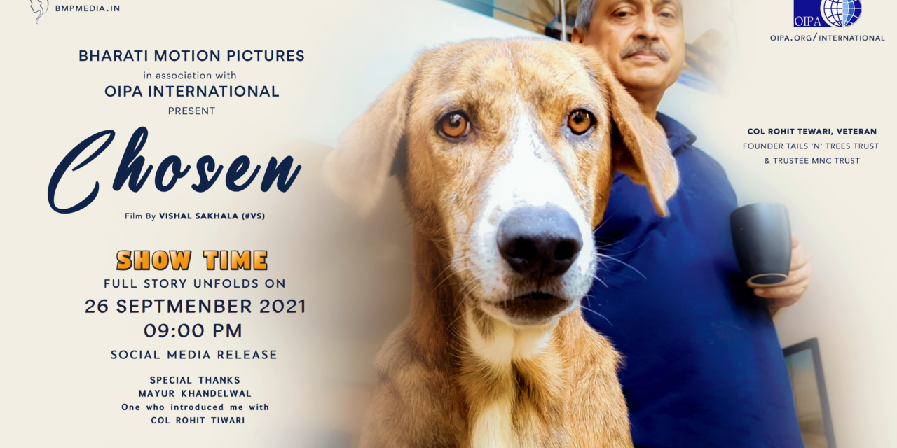 """THE LIFE OF RESCUED AND ADOPTED PETS IN INDIA. A SERIES OF STORIES DOCUMENTED BY OUR LOCAL REPRESENTATIVE. SOON A NEW RELEASE """"CHOSEN"""""""