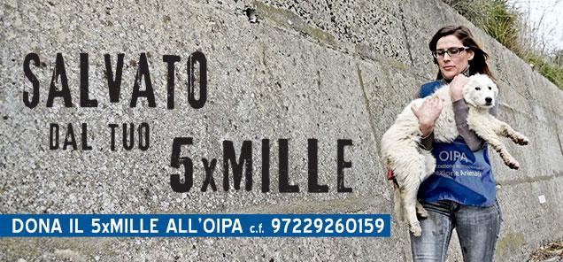 https://www.oipa.org/italia/newsletteroipa/foto/slide/5xmille-02.jpg
