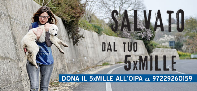 https://www.oipa.org/italia/newsletteroipa/foto/slide/5xmille-03.jpg