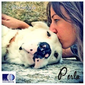 perla-sito