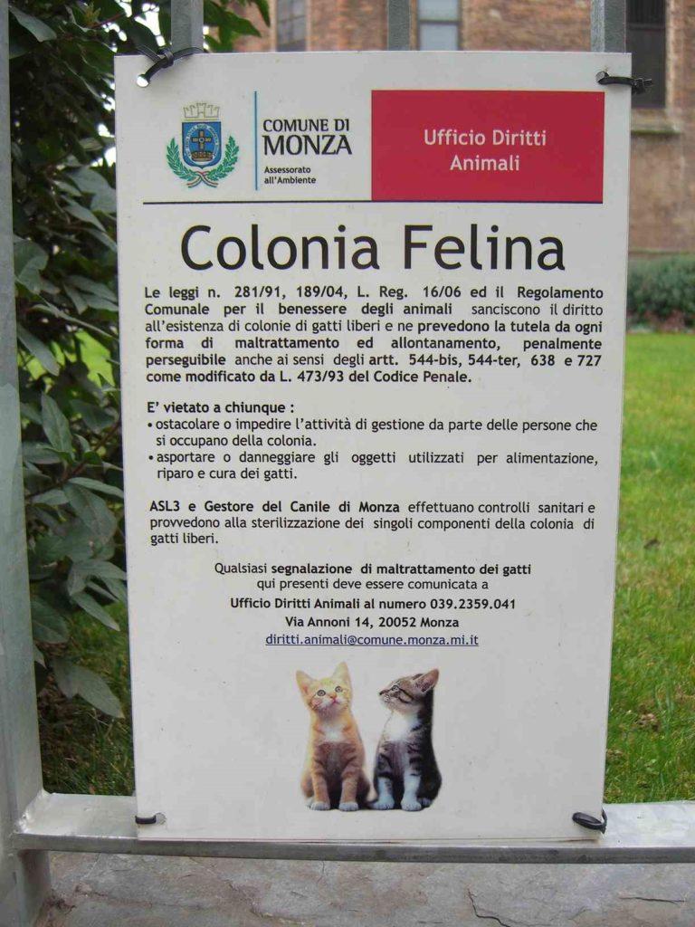 colonia cartello