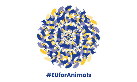 OIPA DIVENTA PARTNER DELLA CAMPAGNA #EUFORANIMALS PER RICHIEDERE UN COMMISSARIO EUROPEO A TUTELA DEL BENESSERE ANIMALE. FIRMA ANCHE TU LA PETIZIONE