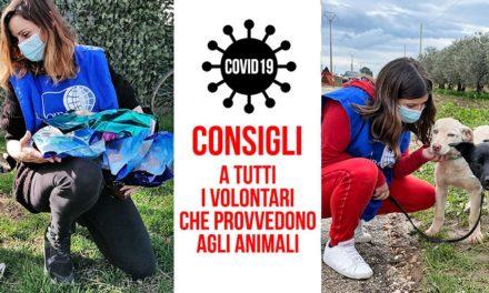 COVID-19 E ASSISTENZA AGLI ANIMALI